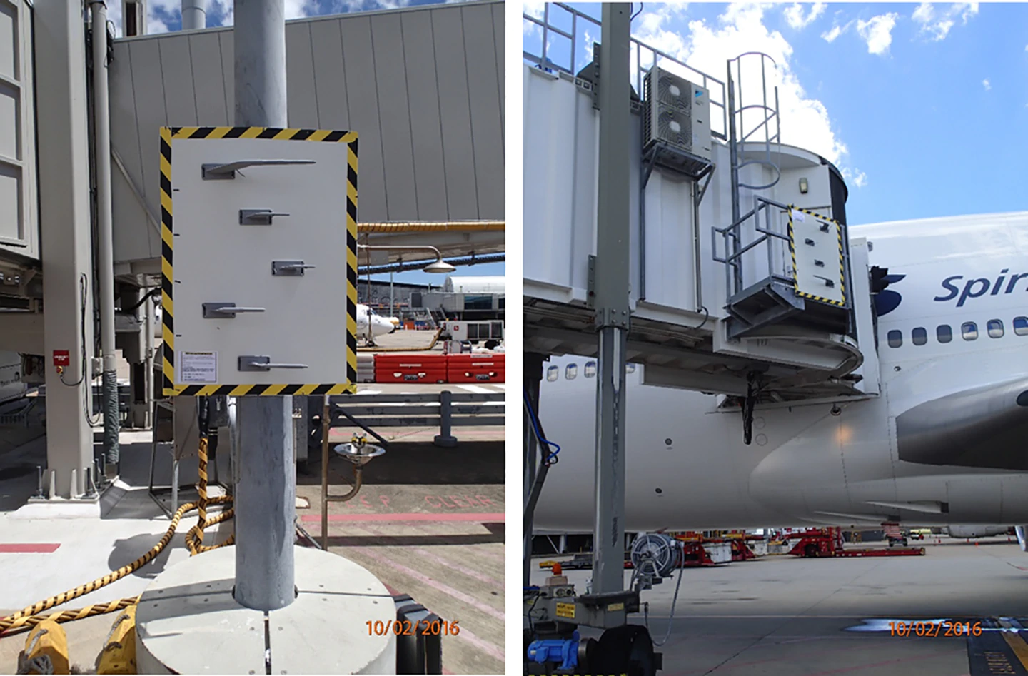 Brisbane airport has been studying the growing wasp problem. Photo / PLOS journal
