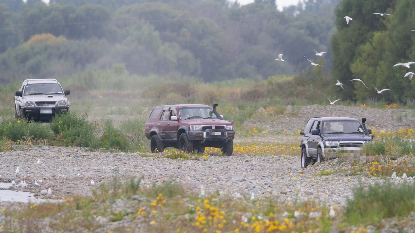 Vehicles racing through the Ashley River where endangered native birds are nesting. Photo: Grant...
