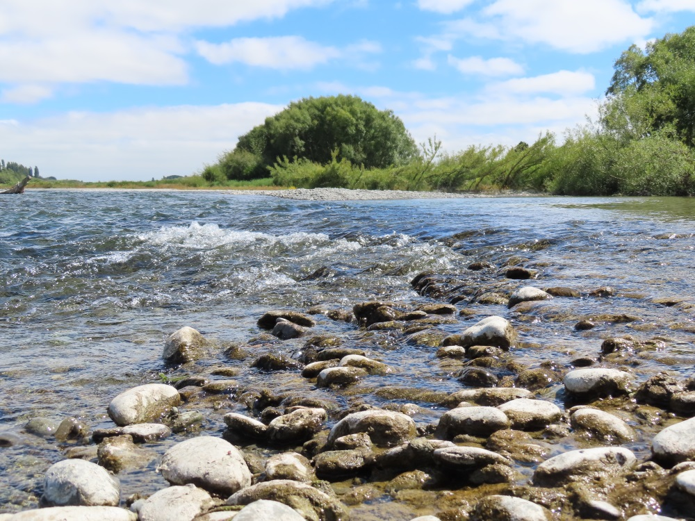 A section of the Ashburton River at Hills Road, which is under a health warning. Photo: Ashburton...