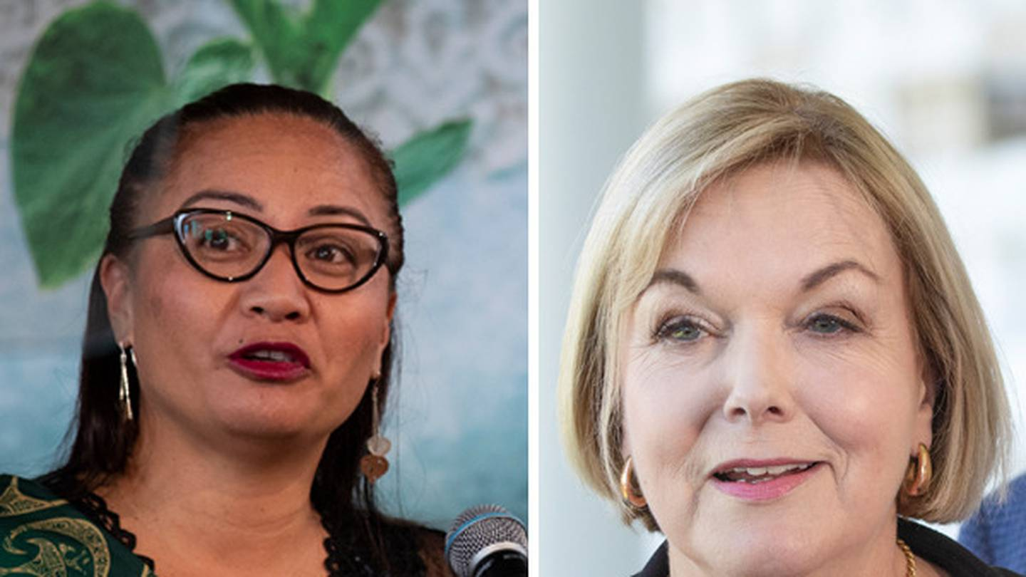 """Marama Davidson has criticised Judith Collins for a lack of """"cultural expertise"""". Photos: NZ Herald"""