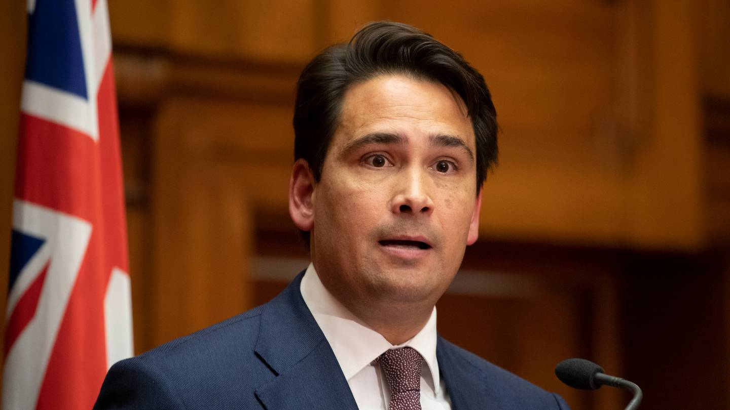 """Simon Bridges says the police commissioner is too """"woke'"""" for the job. Photo: Mark Mitchell / NZH"""