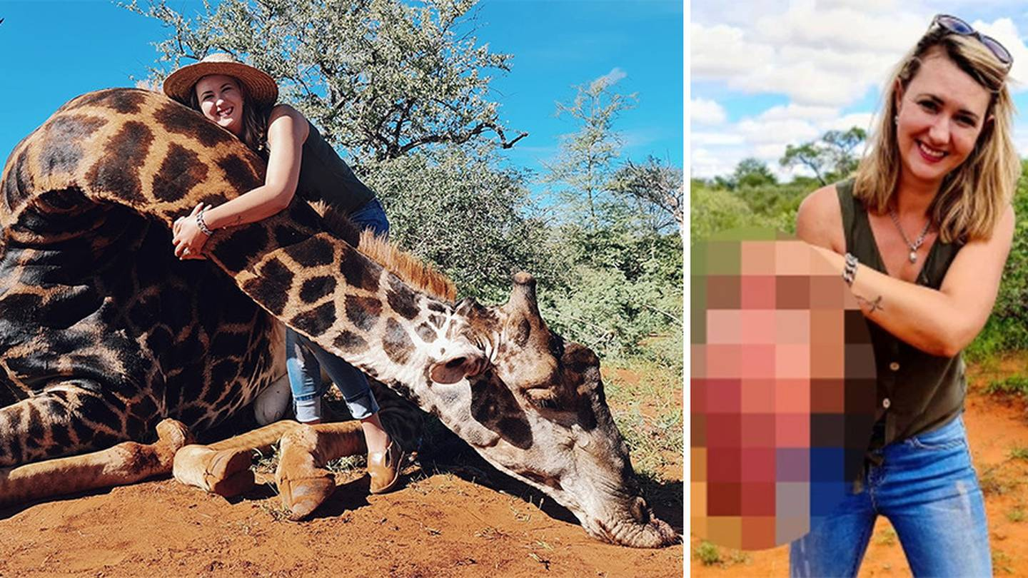 Merelize Van Der Merwe said she had waited two years to hunt an old giraffe. Photo: Facebook,...