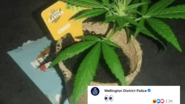 A Facebook user showed off his pot plant. It did not go unnoticed. Photo: Facebook