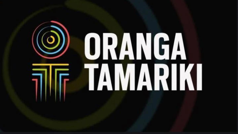 Oranga Tamariki was right to fire a staffer who put a teen in a headlock. Photo: Supplied
