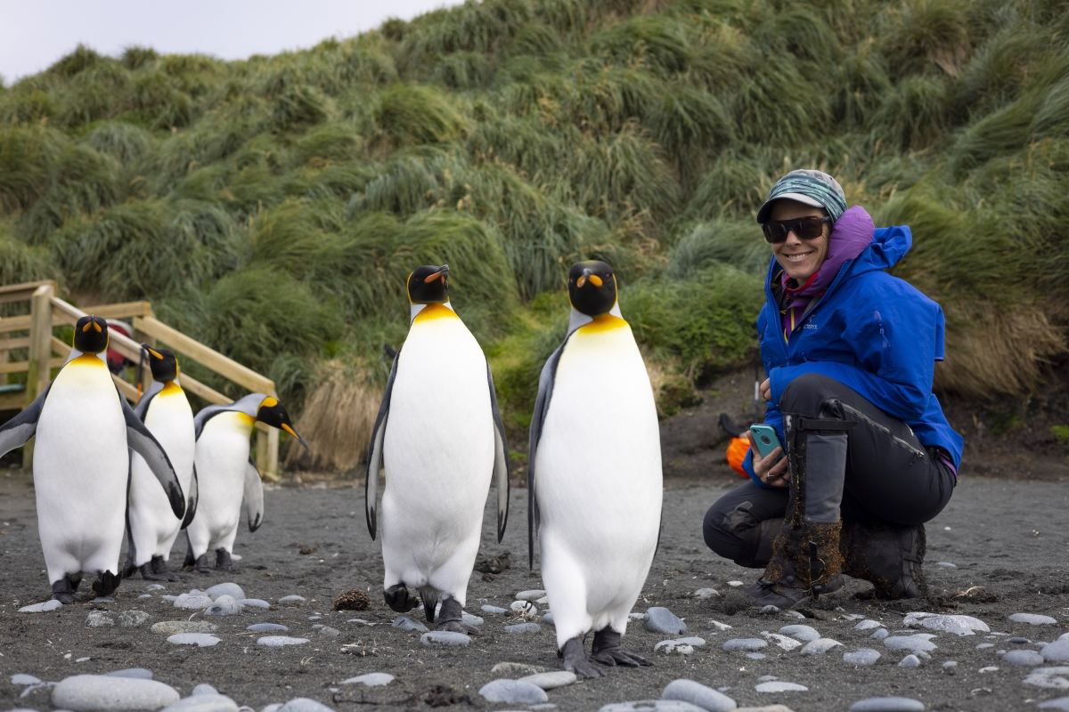 Kimberley Wallace gets up close with King Penguins on Macquarie Island. Photo: Jeff Teda