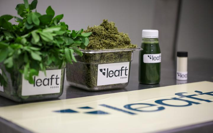Leaft Foods. Photo: RNZ / Nate McKinnon