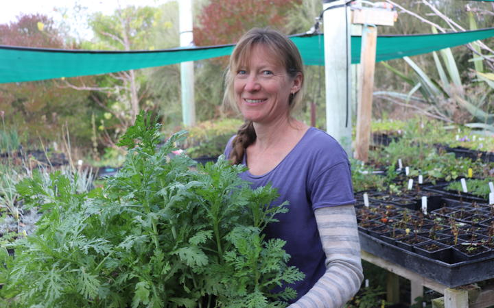 Jo Duff of Kahikatea Farm near Hastings donated some of her plants. Photo: Tom Kitchin