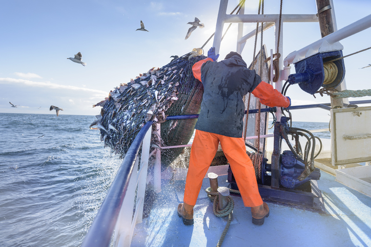 Five fishing companies signed an agreement promising to do more to attract locals to work on...