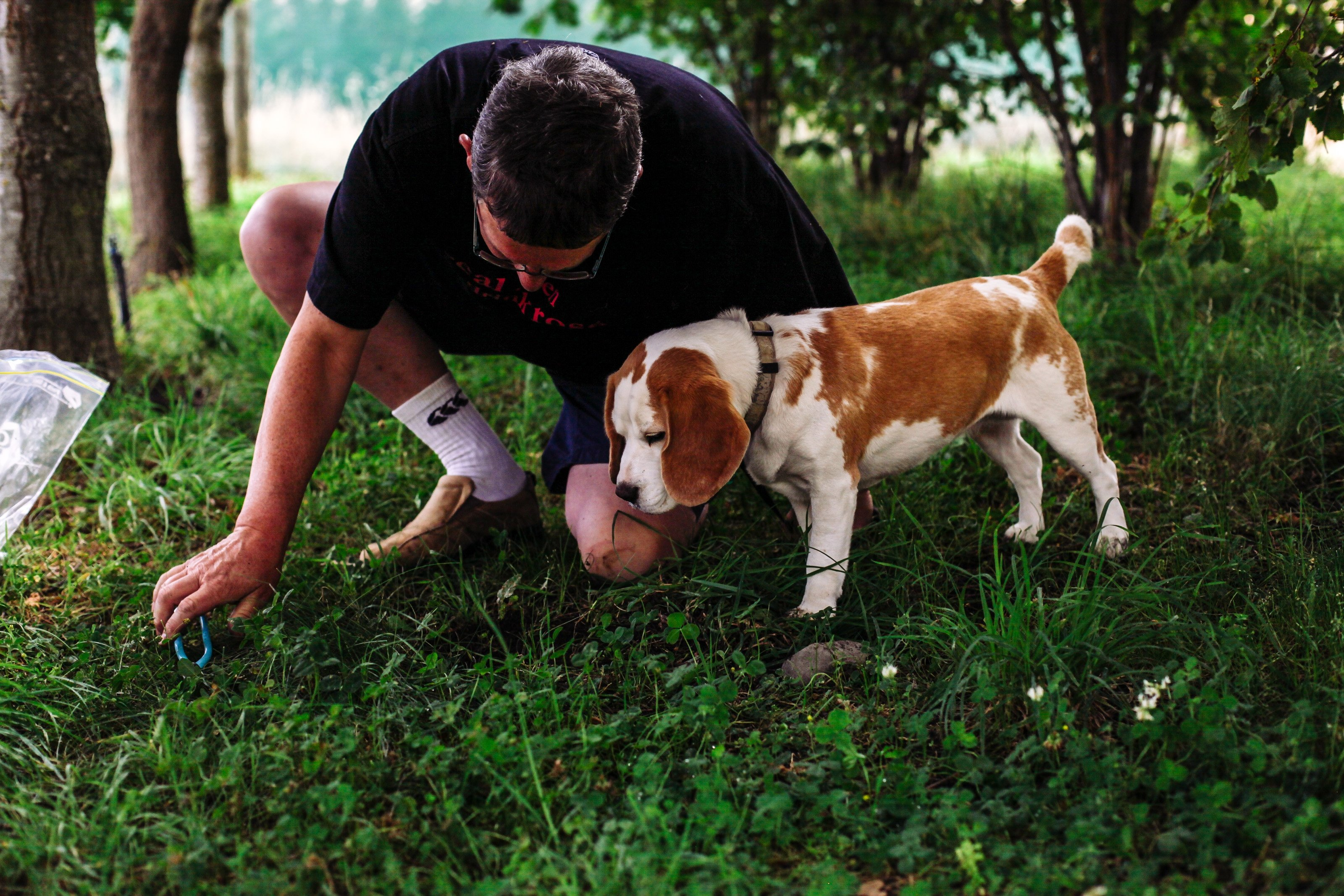 Limestone Hills owner Gareth Renowden, of Waipara Valley, and dog Rosie search for truffles in...