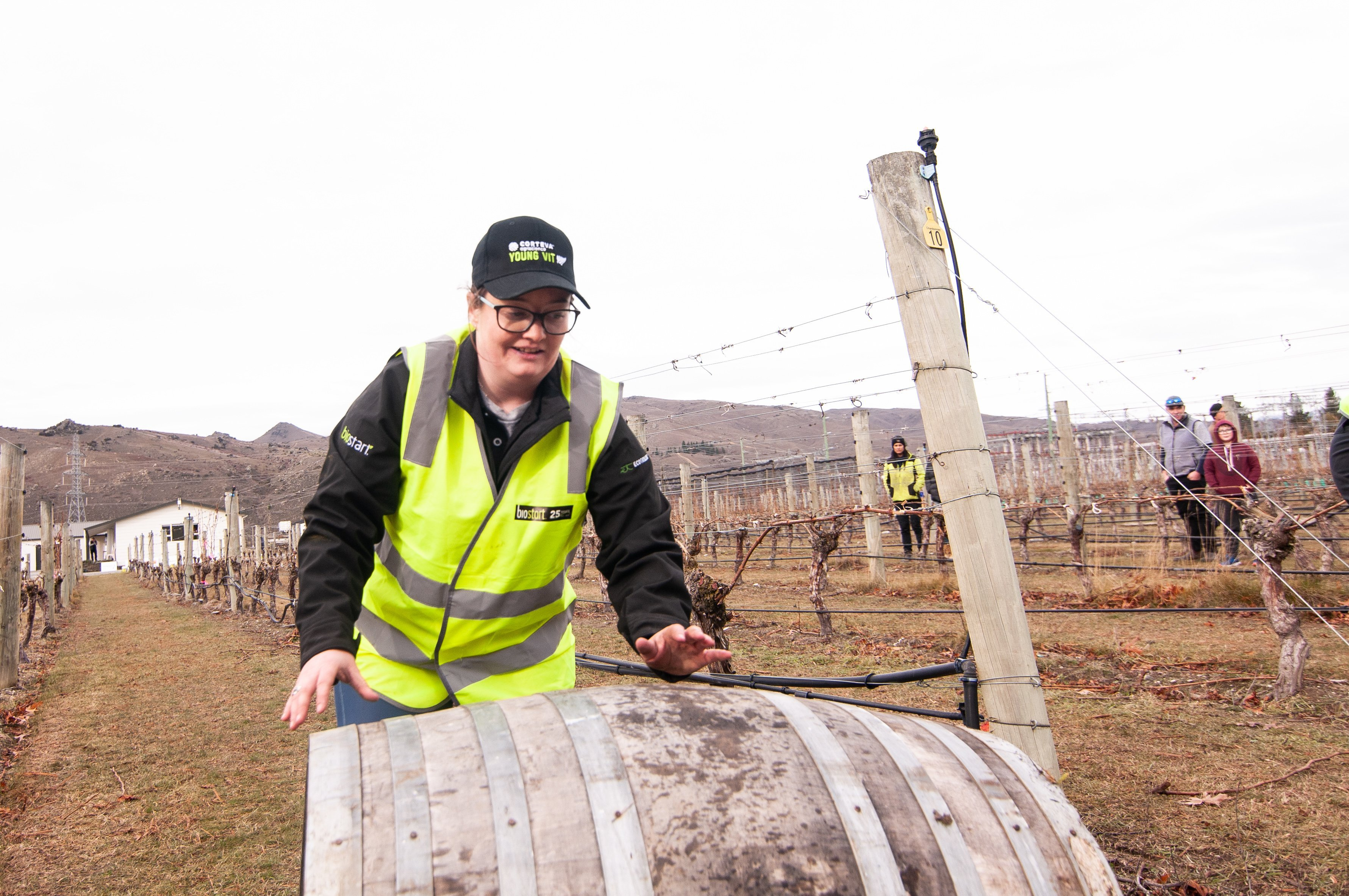 Chard Farm assistant manager Katrina Jackson rushes her wine barrel to the end of the vines...