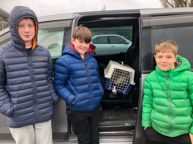 Oliver, Jamie and Leon captured the rooster. Photo: Supplied