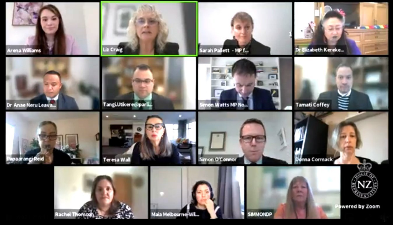 The health select committee at work during a Zoom call. PHOTOS: SUPPLIED