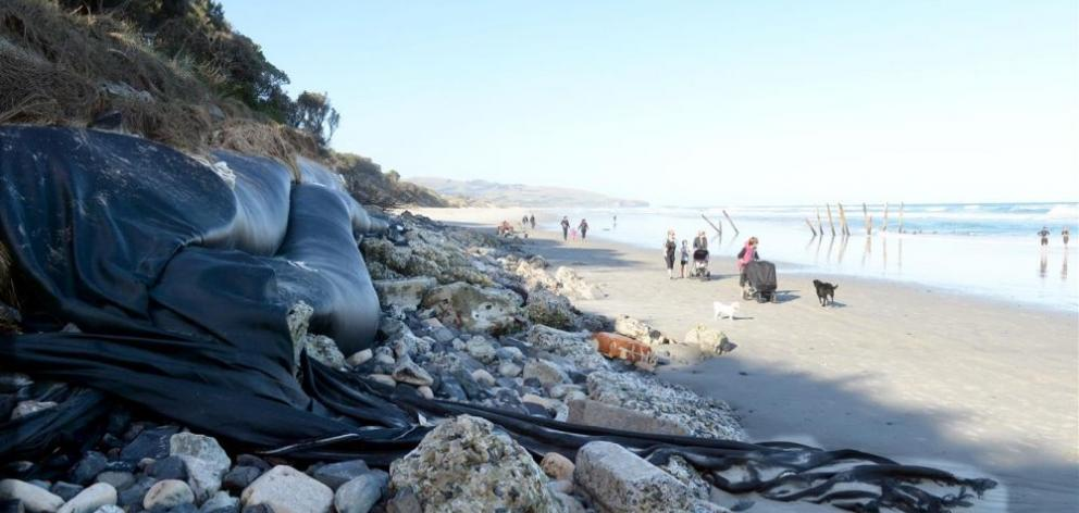 The remnants of the sand sausages at St Clair Beach, Dunedin, which were fully exposed by last June's storms. Photo by Linda Robertson.