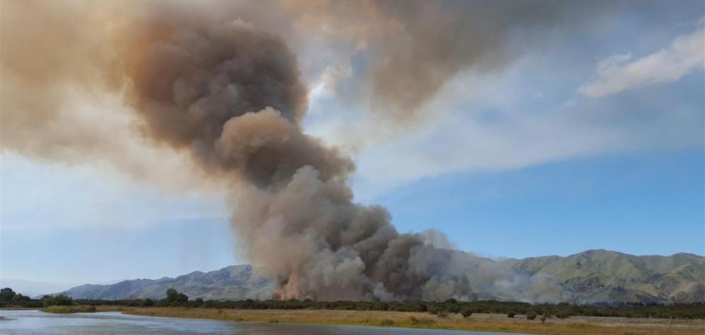 Tom Dodds says he didn't start the fire. Photo: Gerard O'Brien.
