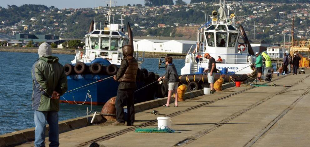 Fishermen line the cement wharf, an area where their recreation can come into conflict with the safe management of a working port. Photo: Stephen Jaquiery