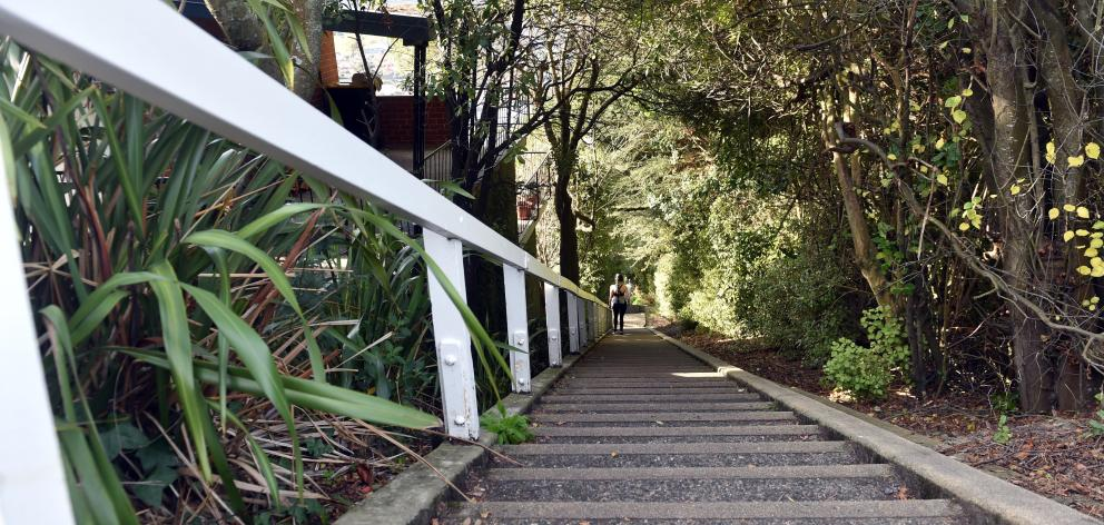 The 279 steps of Jacob's Ladder emerge onto Ravenswood Rd and a heavenly view. Photo: Peter...