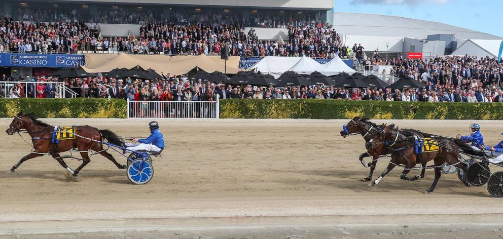 For the first time in 117 years the public may be shut out of Canterbury's annual Cup and Show...