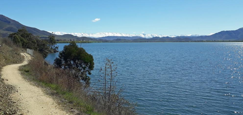 Keeping your eyes on the A20 trail ahead is a challenge with these views at Lake Benmore, heading...
