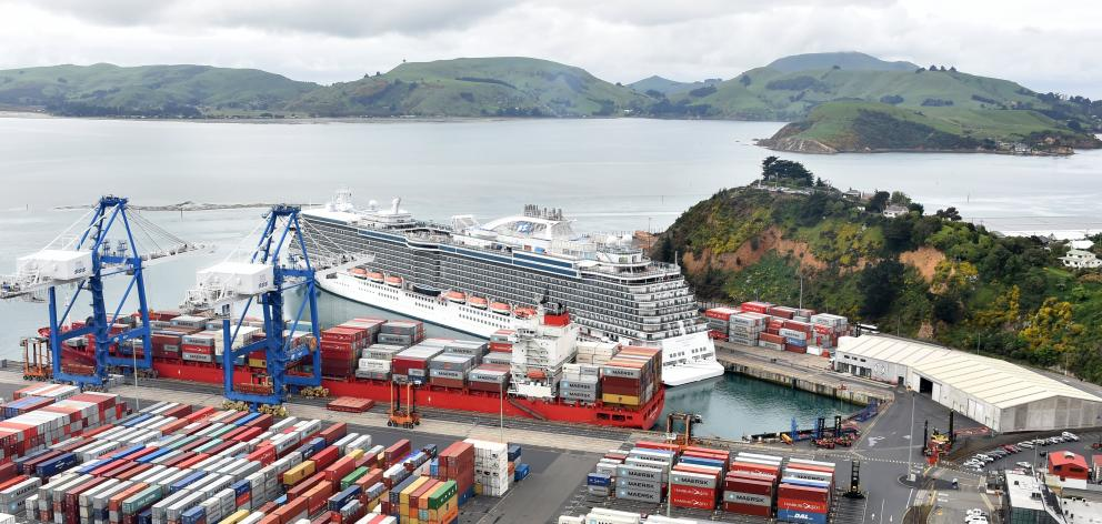 The cruise ship Majestic Princess docked at Port Chalmers in October last year. Photo: Peter McIntosh