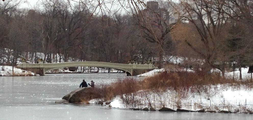 Central Park under a blanket of snow and ice. PHOTO: HELEN SPEIRS