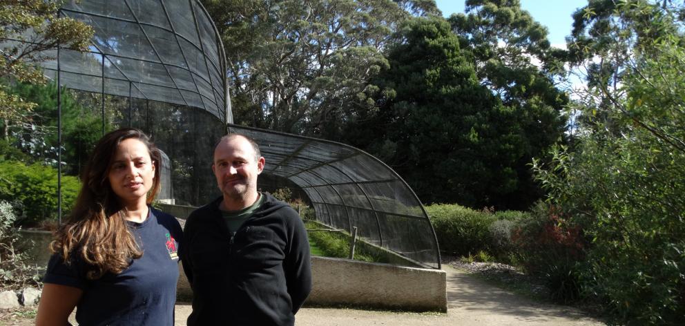 Dunedin Botanic Garden aviary curator Alisha Sherriff and Dunedin Wildlife Hospital Trust co...