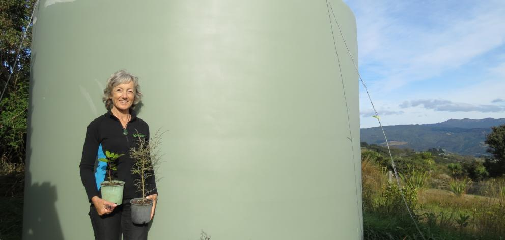 Chris Baillie says she is pleased to have a new water tank which was bought with the help of Speight's funding. PHOTO: ANGELA REID