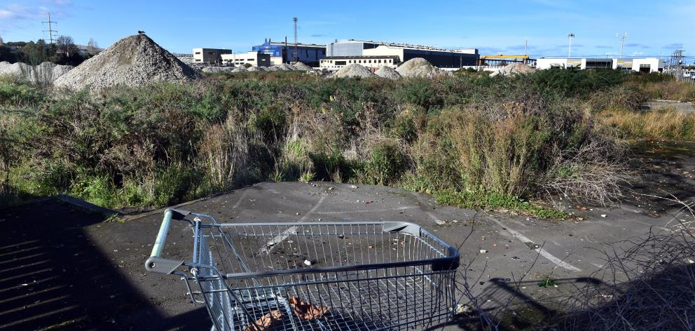 The overgrown site of the old Carisbrook Rugby Ground as it was in mid-May. Photo: Peter McIntosh.