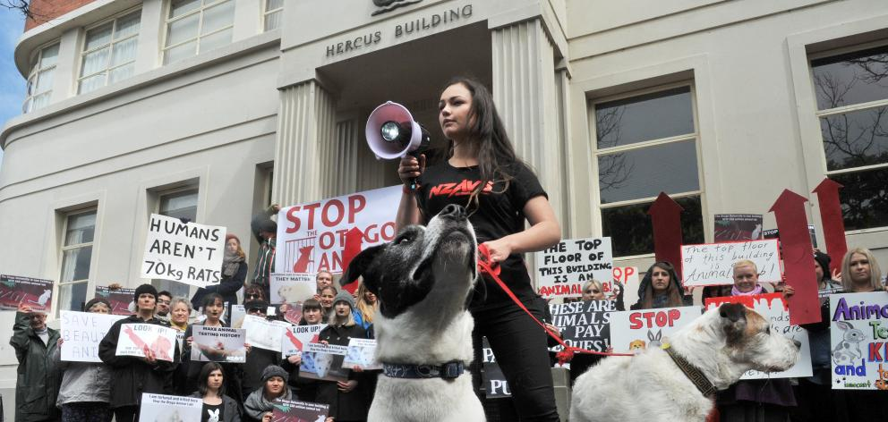 New Zealand Anti-Vivisection Society executive director Tara Jackson, with dogs, Ernie (left) and...