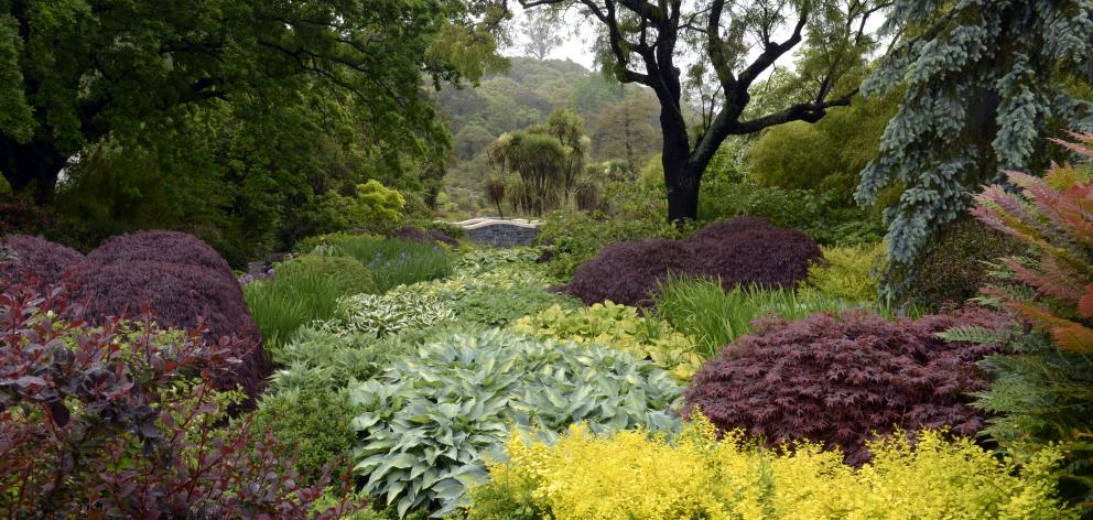 Clive Lister Garden at  Dunedin Botanic Garden. Photo: Gerard O'Brien.