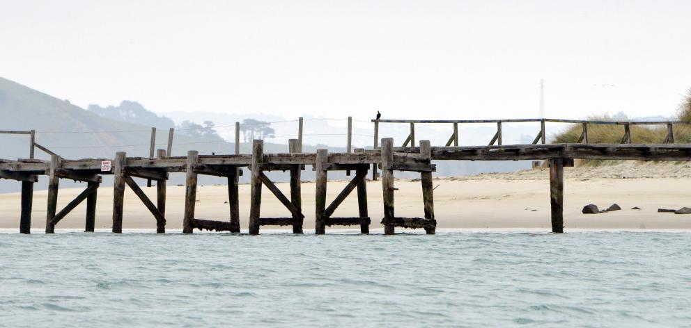 The Aramoana wharf. Photo by Stephen Jaquiery.