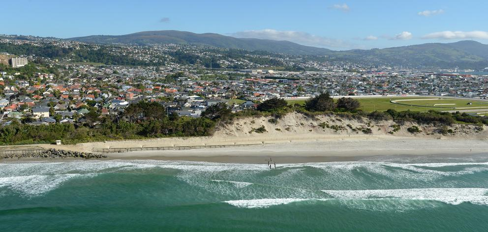 Dunedin offers lifestyle advantages bar none,  the writer believes, including beaches. Photos:...