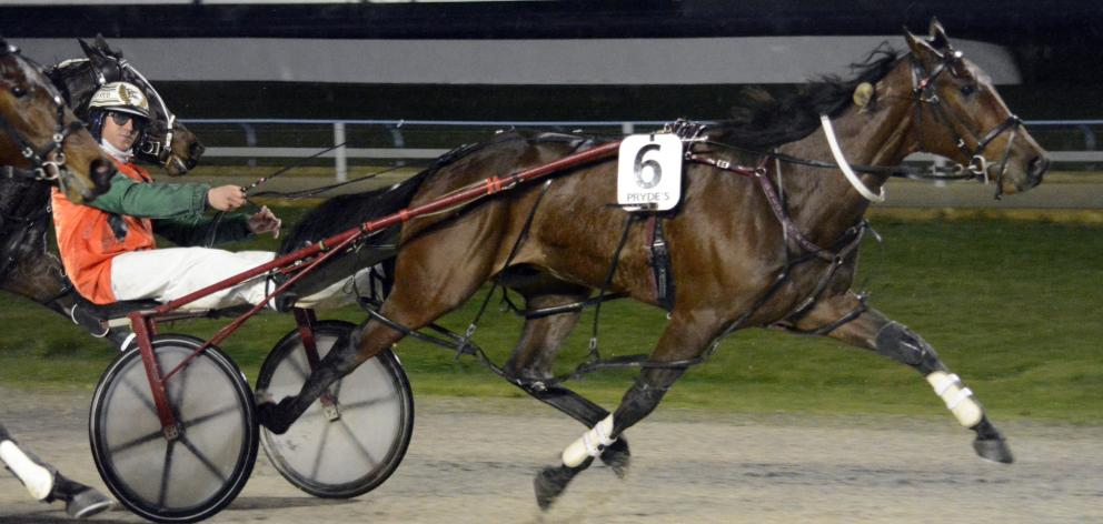 Dexter Dunn steers Time Traveller to a win at Forbury Park last night that will boost the spirits...