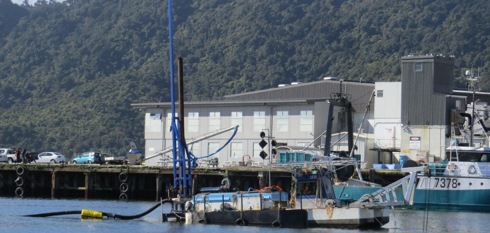 The dredge at work in the Blaketown lagoon yesterday. Photo: Greymouth Star