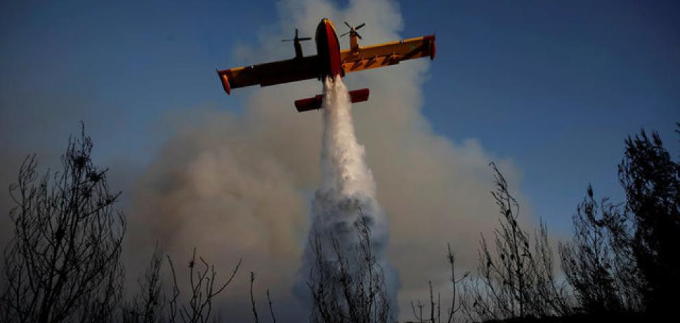A firefighting airplane makes a water drop as a wildfire burns. Photo: Reuters