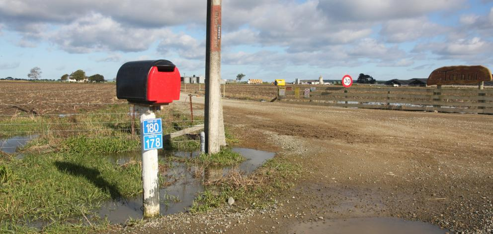 The original Van Leeuwen Dairy Group farm was found to have infected cattle last week. Photo:...