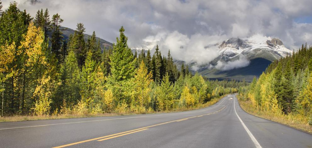 The Icefields Parkway, 230km of magnificence that connects Jasper with Lake Louise, has been...
