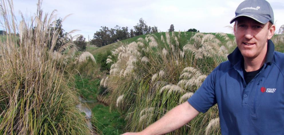 Nick Scott beside a creek which has been fenced and riparian planted. PHOTO: SALLY RAE