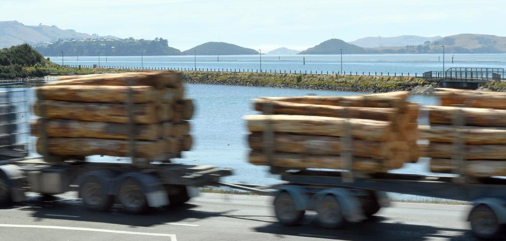 Port Otago says removing all log and container trucks from State Highway 88 to Port Chalmers would make the road safer for other users. Photo: Stephen Jaquiery