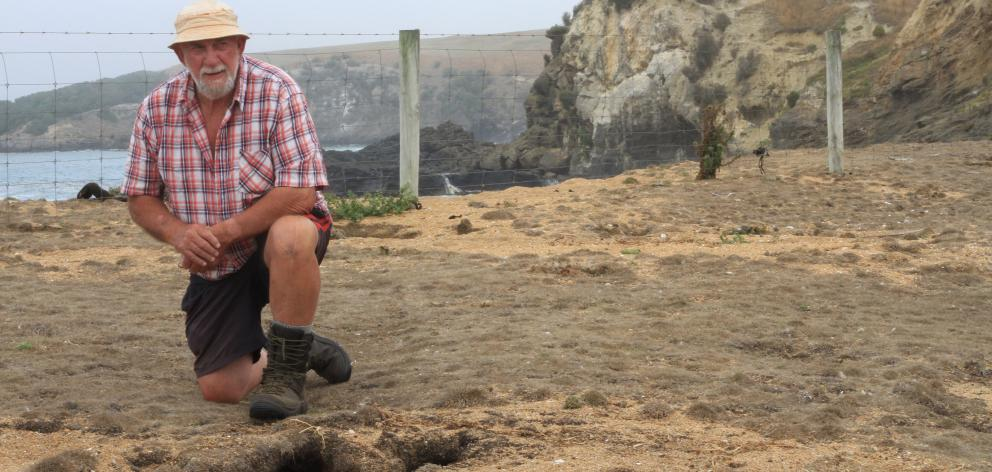 Ross Kean, one of a group of Moeraki residents trying out biodynamic pest control methods, says...
