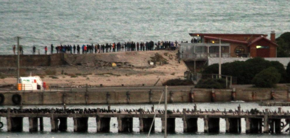 About 70 people gather on Oamaru's breakwater, outside the Oamaru Blue Penguin Colony, to watch...