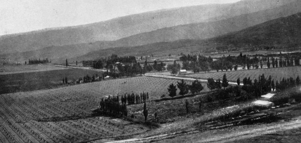 A valuable fruit-growing area in Central Otago: Fruitlands, nine miles from Alexandra, viewed...