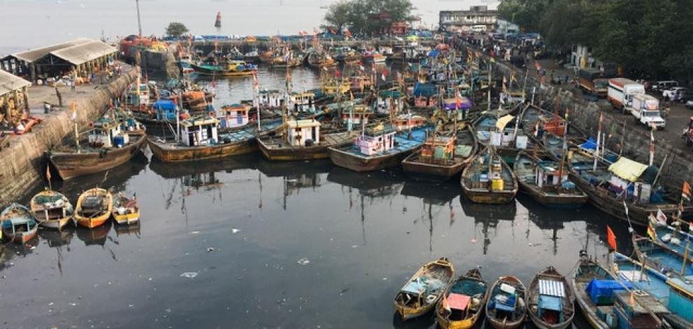 Sassoon Dock, one of the oldest docks in Mumbai, is set for modernisation as part of a planned redevelopment of the city's docklands.  Photo: Reuters