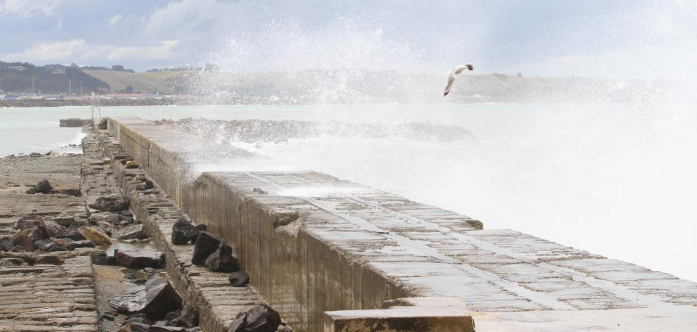 A wave crashes into the Oamaru Harbour breakwater yesterday afternoon. During Thursday evening's...