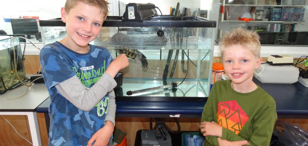 Joshua (8) and Theo (6) Clamp look around the  new science department during Wakatipu High School...