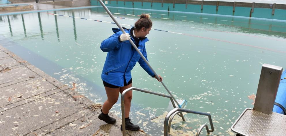 St Clair Hot Salt Water Pool lifeguard Imogen Doyle removes debris brought into the pool during...