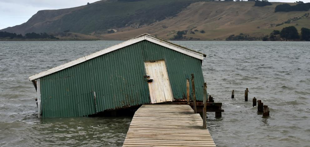 The Majestic, a boatshed in Hoopers Inlet, on Otago Peninsula, has featured in aurora photographs...