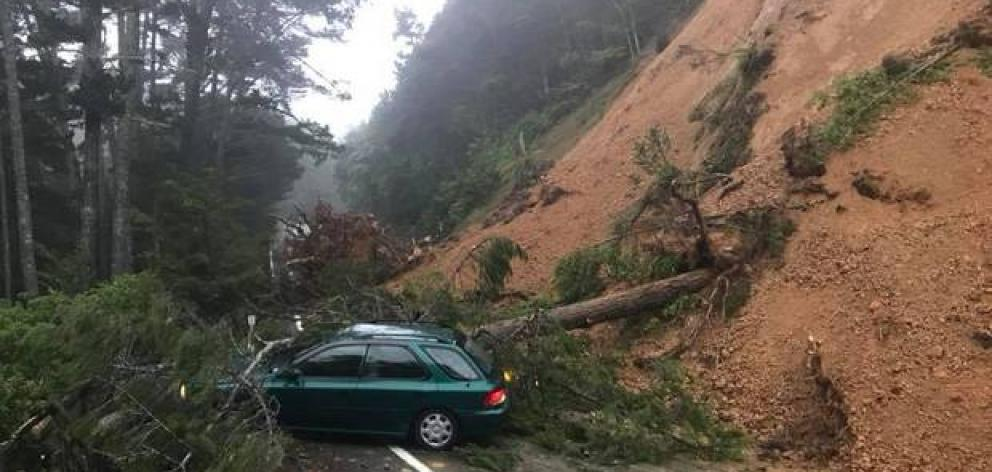 Matthew Millar started reversing when dirt slipped onto the road dislodging a tree which fell onto his car. Photo: NZ Herald / Supplied
