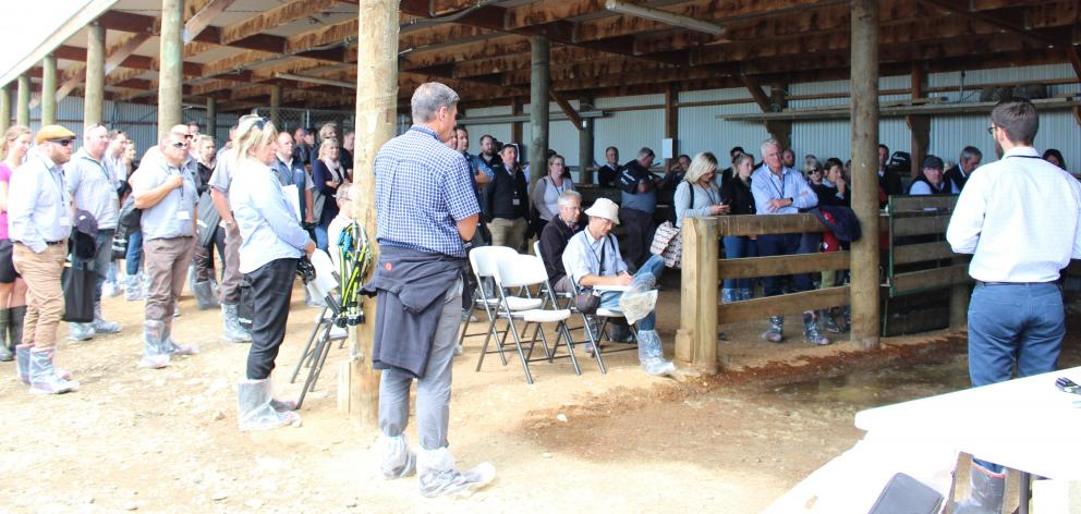 A large crowd attended the launch of EveryCow at Rhys and Emily Hamilton's North Otago dairy farm on February 26. Photo: Supplied