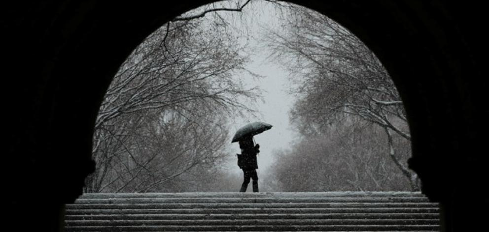 A pedestrian walks through Central Park during a snow storm in New York. Photo: Reuters