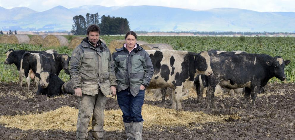 Ben Walling and Sarah Flintoft, who have been caught up in the Mycoplasma bovis outbreak, on...
